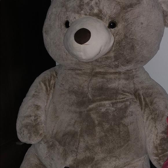 Hay Hay Chicken Stuffed Animal, Other Big Fluffy Teddy Bear Poshmark